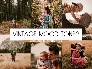 vintage presets lightroom mobile desktop