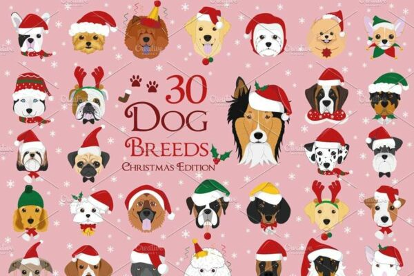 125154942 10224953775738067 2000883518466967811 n Vectorency 50+ Vector Dog Christmas - Dog Hat PNG - Dog Hat Christmas - Christmas Pooches