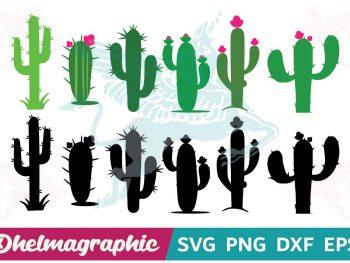 Cactus Sumer SVG