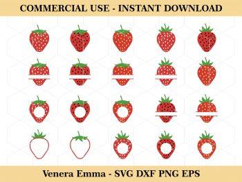 Strawberry SVG