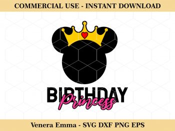 Minnie Mouse Birthday Princess