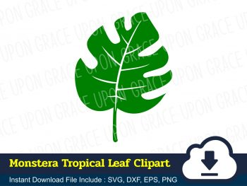 Monstera Tropical Leaf Clipart