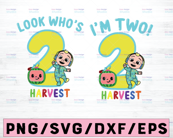 WTMETSY23112020 02 4 Vectorency Cocomelon Personalized Name And Ages Birthday SVG PNG, Cocomelon Birthday PNG SVG, Cocomelon Family Birthday PNG, Watermelon SVG