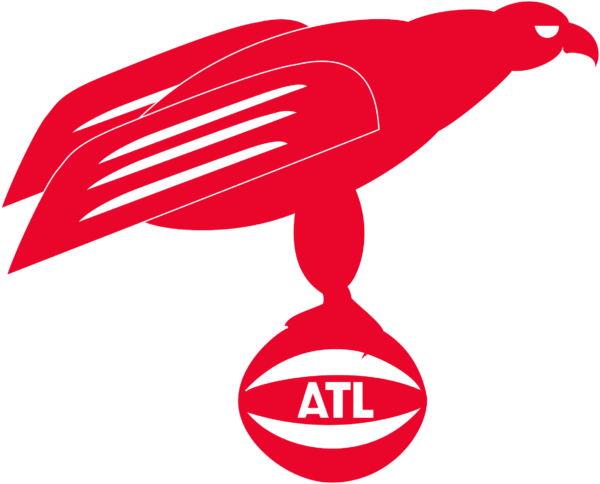 ah 10 Vectorency Atlanta Hawks SVG Files For Silhouette, Files For Cricut, SVG, DXF, EPS, PNG Instant Download
