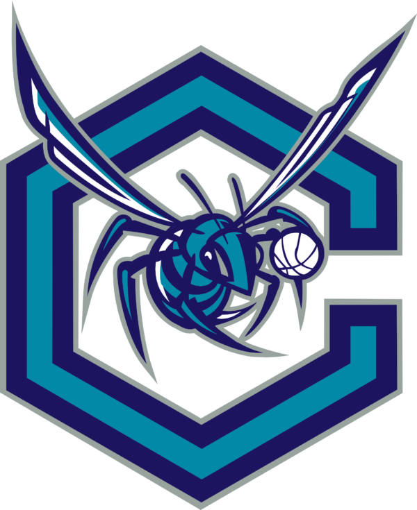 hornets 14 Vectorency Charlotte Hornets SVG, SVG Files For Silhouette, Files For Cricut, SVG, DXF, EPS, PNG Instant Download.