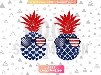 American Pineapple High Heat Screen Print