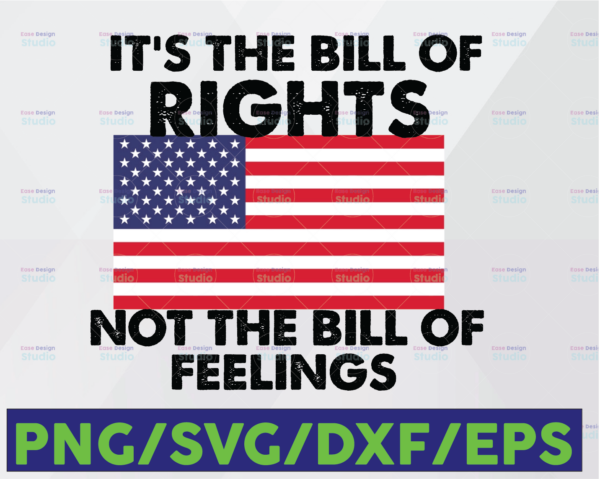 WTMETSY16122020 06 26 Vectorency It's The Bill Of Rights Not The Bill Of Feelings PNG, USA Flag PNG, American Flag, Digital Download, Sublimation, Instant Download