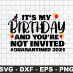 It's My Birthday And You're Not Invited Quarantined 2021 SVG