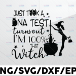 WTMETSY13012021 01 30 Vectorency I Just Took a DNA Test Turns Out I'm 100% that Witch svg a Halloween parody, Halloween svg png, womens fall svg, that witch svg