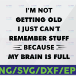 WTMETSY16122020 06 Vectorency I'm Not Getting Old I Just Can't Remember Stuff Because My Brain Is Full Svg cricut Png Hearts Sublimation